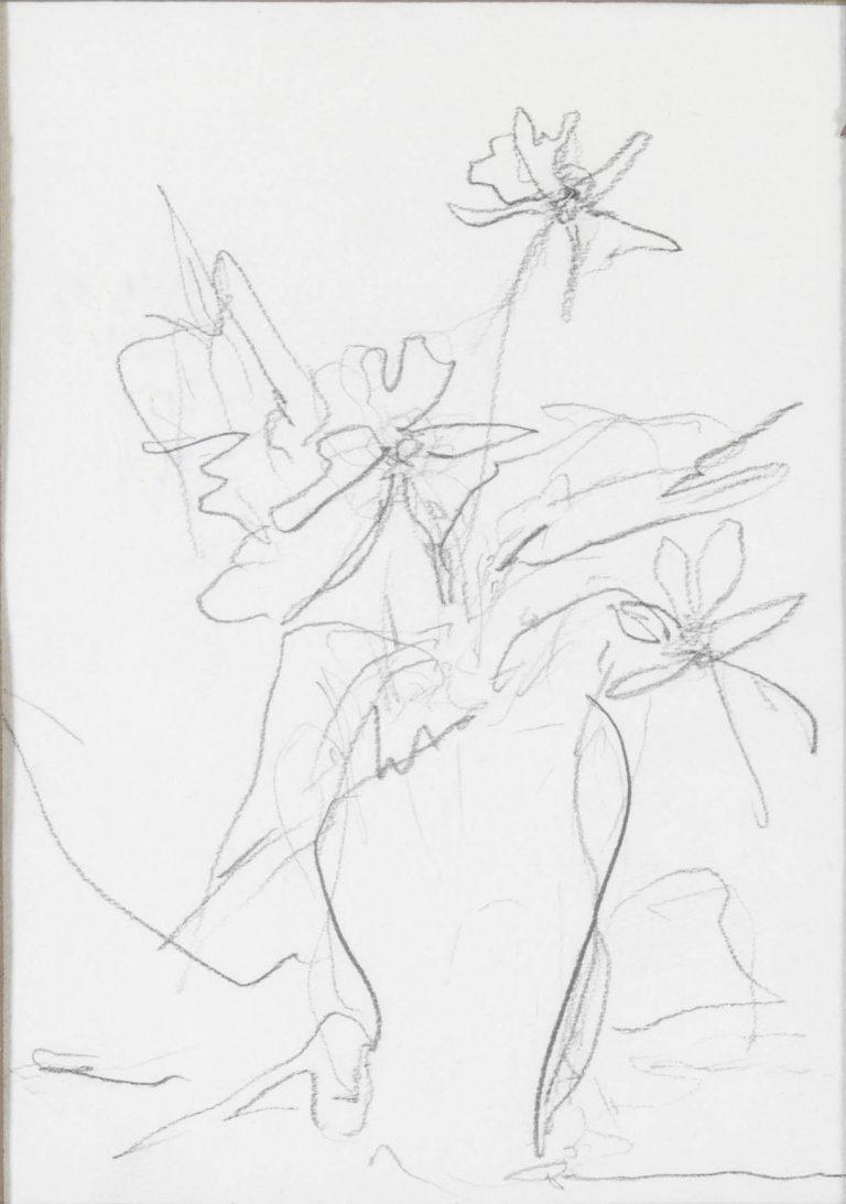 Μελέτη ΙΙ Βάζο με λουλούδια μολύβι σε χαρτί 17,5 x 12,5 εκ.